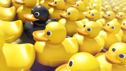 Black rubber ducky among yellow rubber duckies