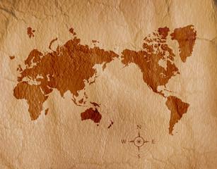 皮に描かれた世界地図