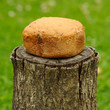 Homemade Bread on Tree Stump