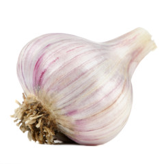 Garlic Head Isolated on White Background
