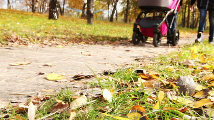 Young couple walk in autumn park with little buggy