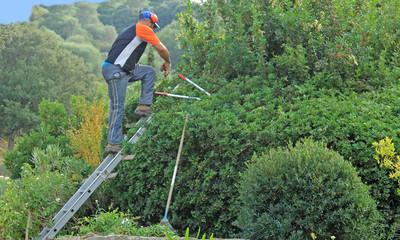 l ouvrier des jardins
