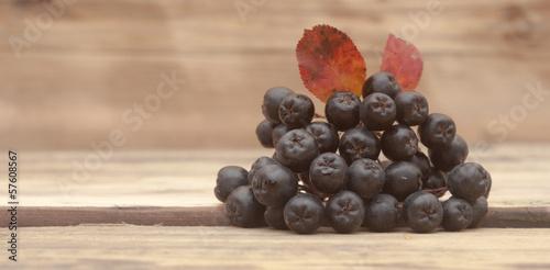 Black chokeberry (Aronia melanocarpa) berries with leafs on wood