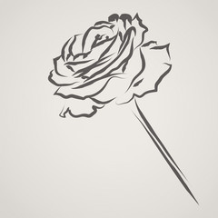 Ink brush rose with space for text