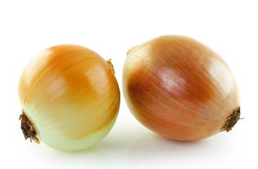 Ripe onion on a white background