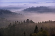 foggy dawn over the Bohemian Switzerland