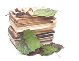 Stack of old books with autumn leaf on a white background