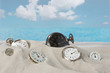 Clocks on the beach