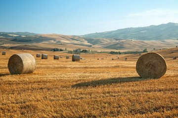 View of summer landscape in Tuscany, Italy