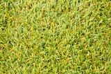 artificial green grass poster