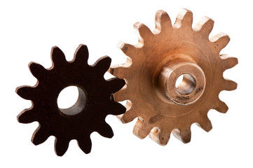 gear on the white background