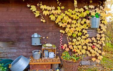 Herbst im Gartengrundstück