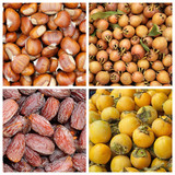 collection of autumnal fruits backgrounds