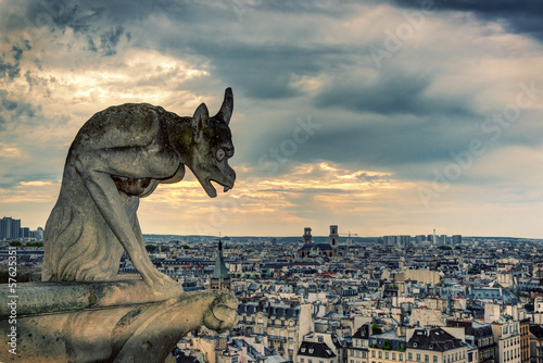 Chimera (gargoyle) of the Cathedral of Notre Dame de Paris overl