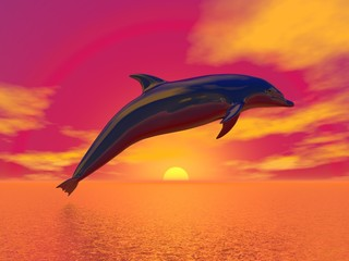 Freedom of the dolphin - 3D render