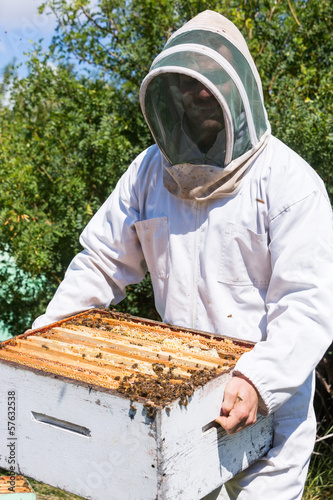 Beekeeper Carrying Honeycomb Frames In Crate