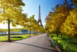 autumn morning and Eiffel Tower, Paris, France