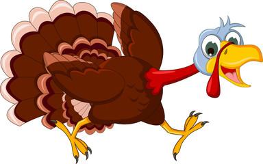 Funny Turkey Cartoon Running