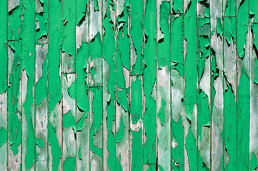Green painted wooden background, damaged and old