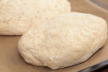 bread making - two formed loaves of raw dough