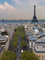 Eiffel Tower and Paris Skyline, Portrait