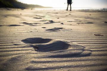 Nordic walking sport run walk motion blur outdoor person legs tr