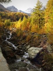 Herbstlandschaft im VS