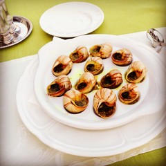 dish of escargots