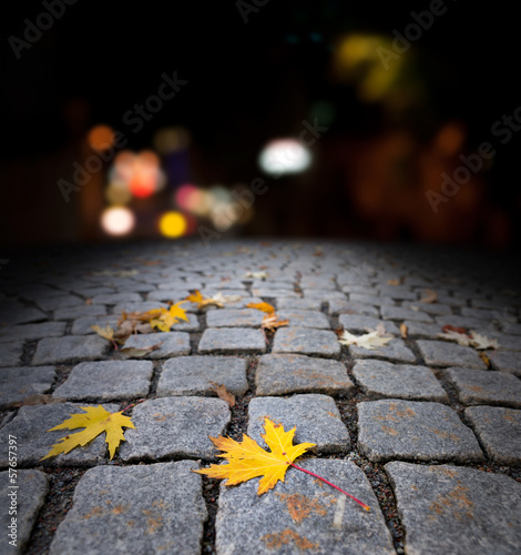 autumn maple leaf on street at night