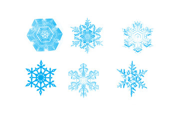 snowflakes isolated