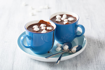 hot chocolate with small marshmallows