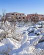frisch verschneiter Park