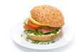 burger with smoked salmon and vegetables on the plate, isolated