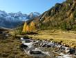 Herbst im Hochgebirge mit Gletscherbach