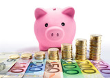 Piggy bank with euro coin stacks and banknotes - increase