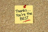 Thanks… You're the best. Cork board