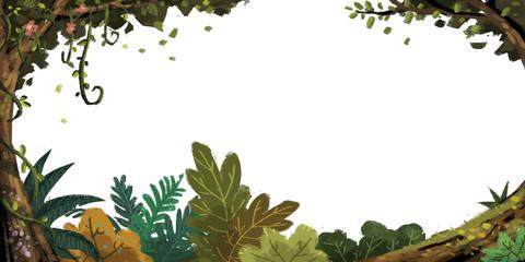 marco de bosque