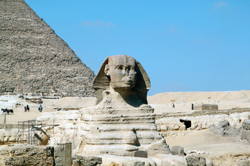 Sphinx in Egypt in Cairo