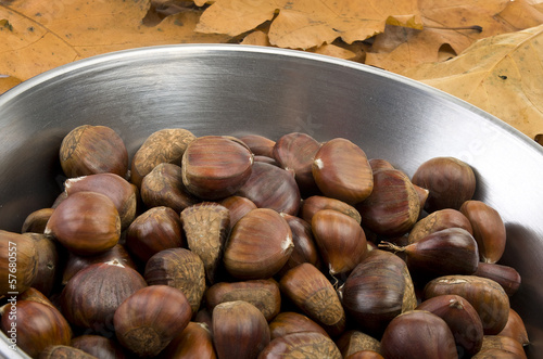 delicious group of chestnuts close up shoot