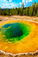 Morning Glory Pool, Yellowstone National Park, Upper Geyser Basi