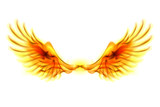 Fire wings.