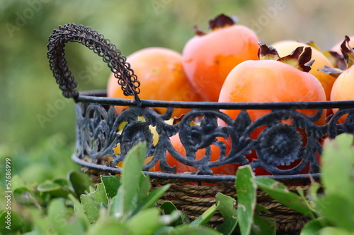 persimmon in basket with green background