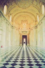 Reggia di Venaria retro looking