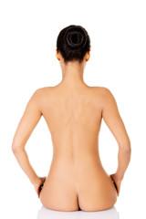 Beautiful naked woman sitting. Back view.