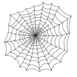 black spider web for the holiday Halloween vector
