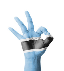 Hand making Ok sign, Botswana flag painted