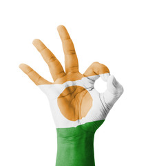 Hand making Ok sign, Niger flag painted