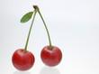 Kirschenpaar rot