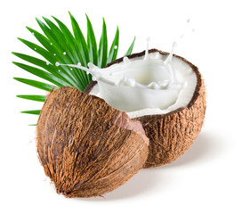 Coconuts withmilk splash and leaf on white background