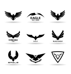 Eagles (11)